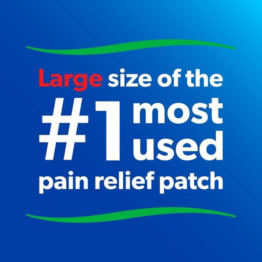 Salonpas Pain Relieving Patch, Large, 6 ct, , large image number 3