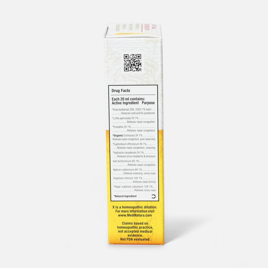 ReBoost Echinacea +6 Decongestion Nasal Spray, , large image number 5