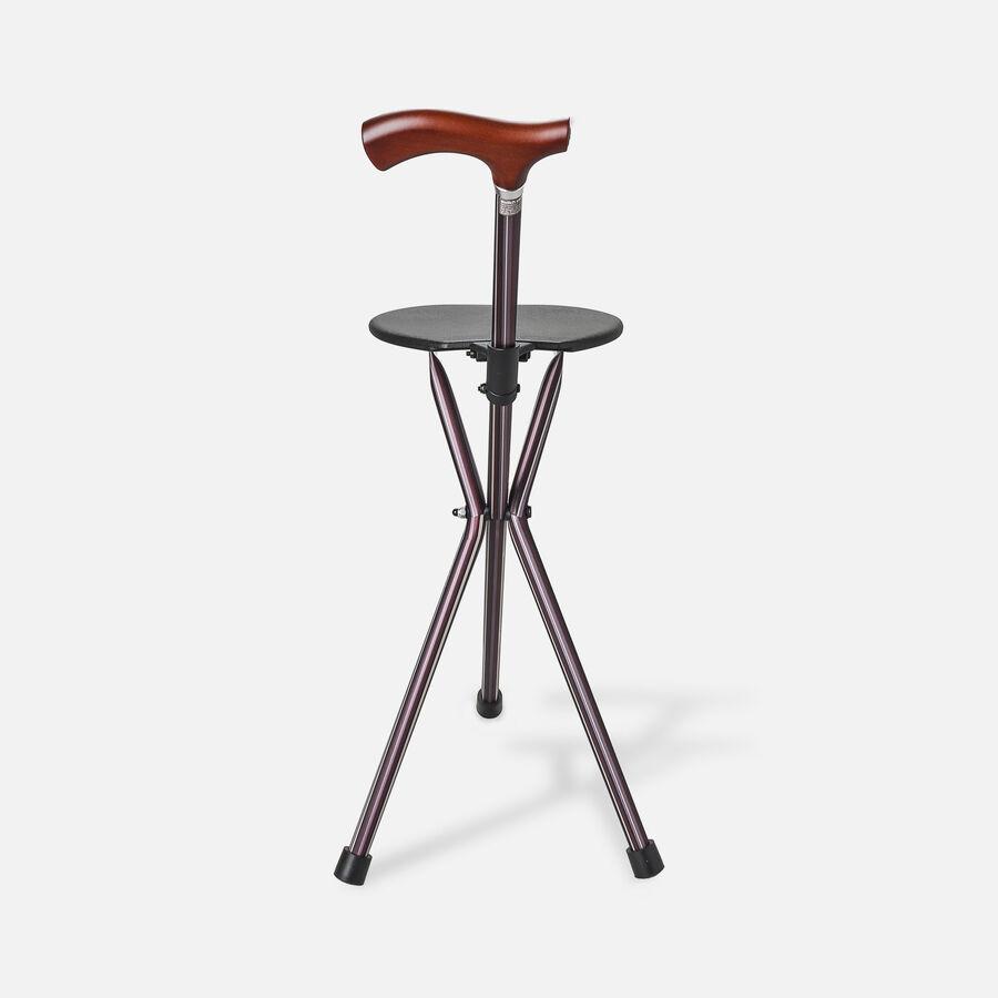 Switch Sticks Seat Stick, 2-in-1 Walking Cane Seat, Folding, Kensington, , large image number 2