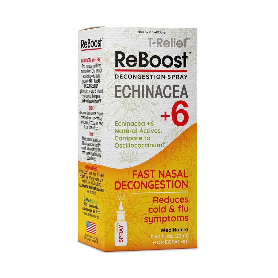 ReBoost Echinacea +6 Decongestion Nasal Spray, , large image number 0