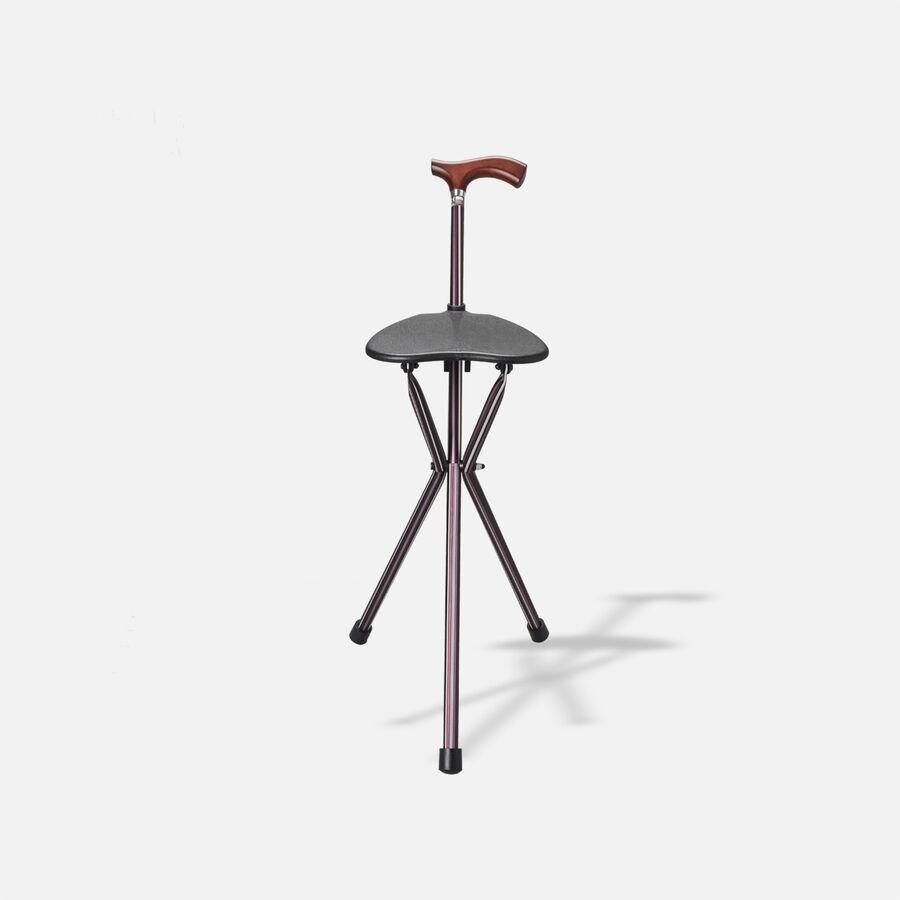 Switch Sticks Seat Stick, 2-in-1 Walking Cane Seat, Folding, Kensington, , large image number 0